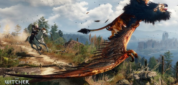 witcher3_en_screenshot_the_witcher_3_wild_hunt_screenshot_37_1920x1080_1425653256