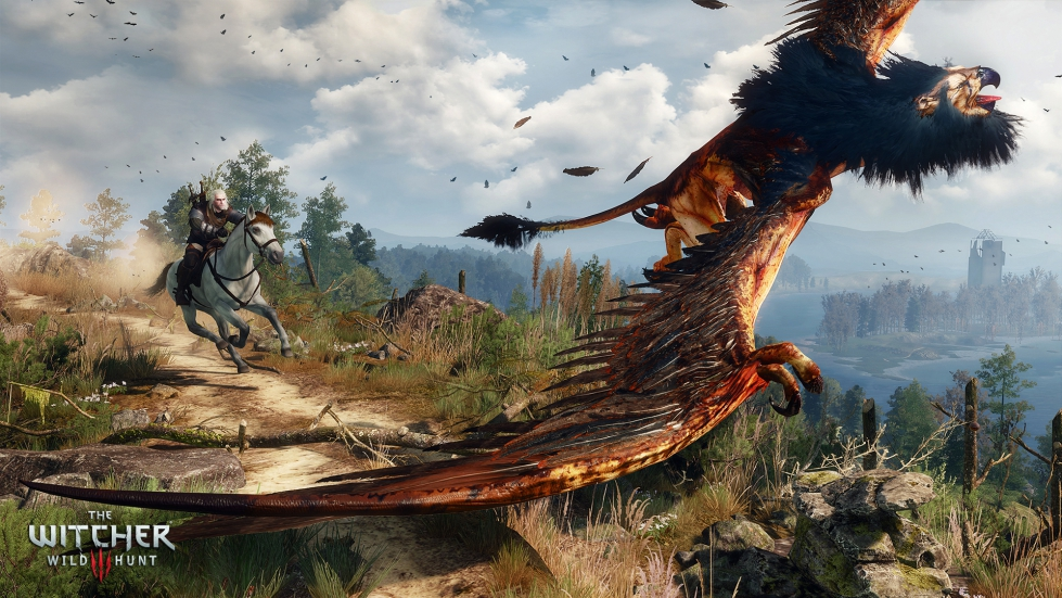 witcher3_en_screenshot_the_witcher_3_wild_hunt_screenshot_37_1920x1080_1425653256